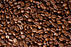 Coffe beans. Background in a coffeeshop stock photography