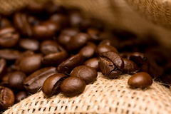 Coffe Beans. Inside burlap bag filled with coffee beans - selected focus Stock Images