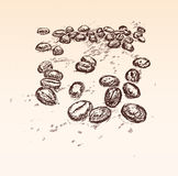 Coffe beans background royalty free illustration
