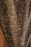 Coffe beans. Brown coffee beans staked in the grinder Royalty Free Stock Photos