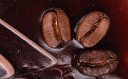 Coffe beans on a cake Stock Image