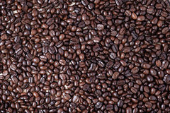 Coffe beans Stock Photo