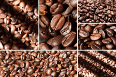 Coffe beans collage. Collage of coffe beans and shade Stock Images