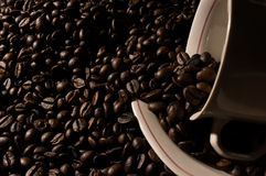 Coffe beans and cup. High resolution image Stock Photo