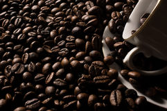 Coffe beans and cup. High resolution image Royalty Free Stock Image