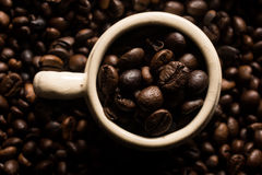 Coffe beans and cup. High resolution image Royalty Free Stock Photography