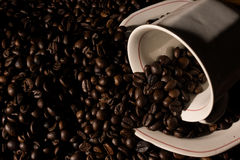 Coffe beans and cup. High resolution image Royalty Free Stock Photos