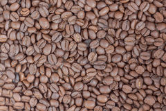 Coffe Beans. Decaf Coffee Beans Background image royalty free stock photography