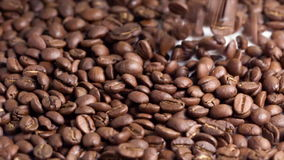 Coffe beans flow over white background fill frame stock footage