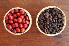Coffe beans and fresh berries beans Stock Photo