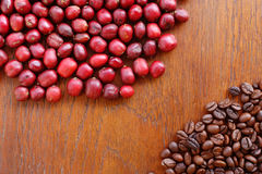 Coffe beans and fresh berries beans Stock Image