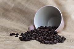 Coffe beans and a pink fallen cup on rusty background with copy Stock Photography