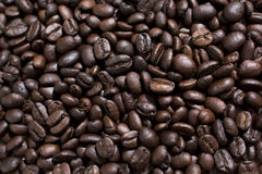 Coffe beans. Roasted coffee beans, can be used as a background Royalty Free Stock Images