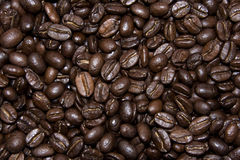 Coffe beans texture background Royalty Free Stock Photos