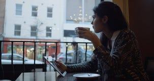 Coffe bevente della bella ragazza nel caffè Movimento lento 4K archivi video