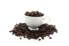 Coffe Bohne im weißen Cup Lizenzfreie Stockbilder