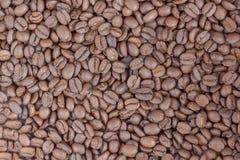 Coffe Bohnen lizenzfreie stockfotografie