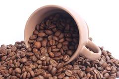 Coffe Bohnen und Cup Lizenzfreies Stockbild