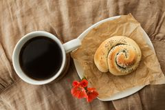 Coffe, bun with poppy seeds and geranium flower stock images