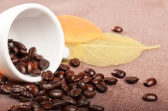 Coffe Cup And Leaves Royalty Free Stock Photography