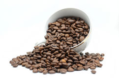 Coffe cup and beans. On white royalty free stock photos