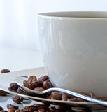 Coffe cup and coffe beans Stock Photography