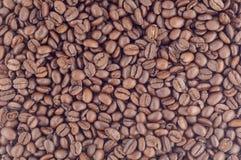 Coffe fasole Fotografia Royalty Free