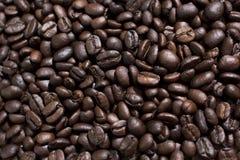 Coffe fasole obrazy royalty free