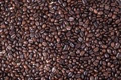 Coffe fasole Zdjęcie Stock