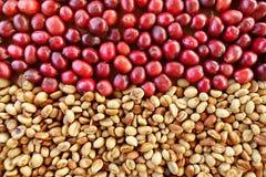Coffe fasole i świeże jagod fasole Zdjęcie Royalty Free