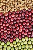 Coffe fasole i świeże jagod fasole Zdjęcia Stock
