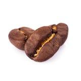 Coffe fasole odizolowywać zdjęcie royalty free