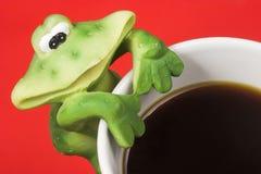 coffe frog royaltyfria bilder