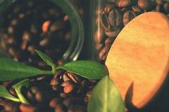 Coffe grain stock photo