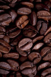 Coffe grains Stock Images