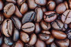 Coffe grains. Background of freshly roasted coffee beans Royalty Free Stock Photo