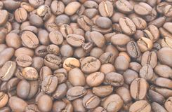 Coffe grains Stock Photography