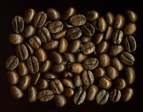 Coffe grains. Scanned coffee grains Stock Photo
