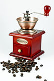 Coffe gringer Royalty-vrije Stock Afbeeldingen