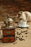 Coffe gringer Royalty Free Stock Images