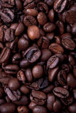 Coffe Körner Lizenzfreies Stockbild