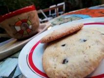 Coffe met koekjes royalty-vrije stock afbeeldingen