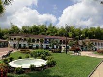 Coffe parkerar Colombia arkivbilder