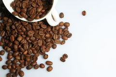 Coffe Royalty Free Stock Photography