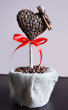 Coffe's tree Stock Image