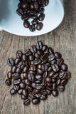 Coffe seed and cup Royalty Free Stock Image
