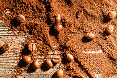 Coffe seed and grain Royalty Free Stock Image