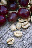 Coffe verde (coffea arabica) Fotografie Stock Libere da Diritti