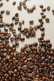 Coffebeans στο ουδέτερο γκρίζο υπόβαθρο σκοτεινό roast καφέ στοκ εικόνα με δικαίωμα ελεύθερης χρήσης