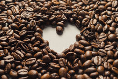 Coffebeans on Neutral Gray Background. Dark Roast Coffee. Dark Roast Coffee on neutral Background Stock Photos